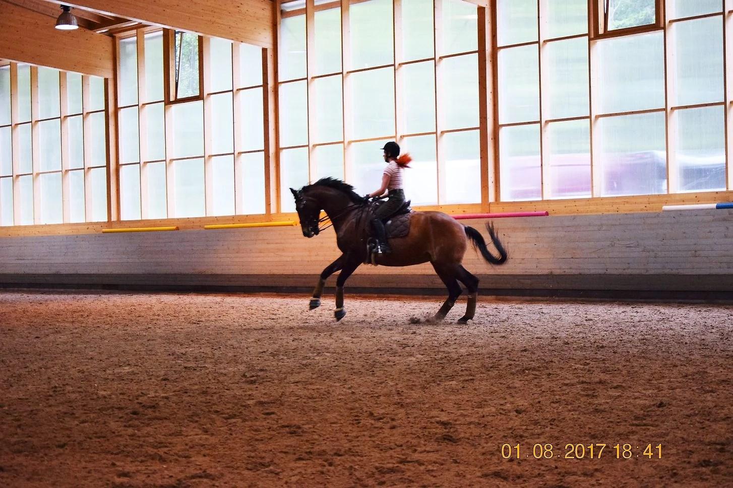 Kehityskohteeni ratsastajana