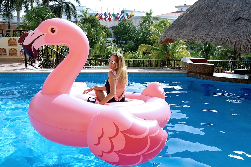 Pink flamingo in the pool