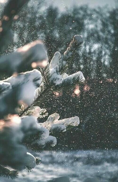 Snö äntligen ❄️