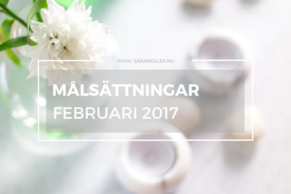 Målsättningar || FABruari 2017