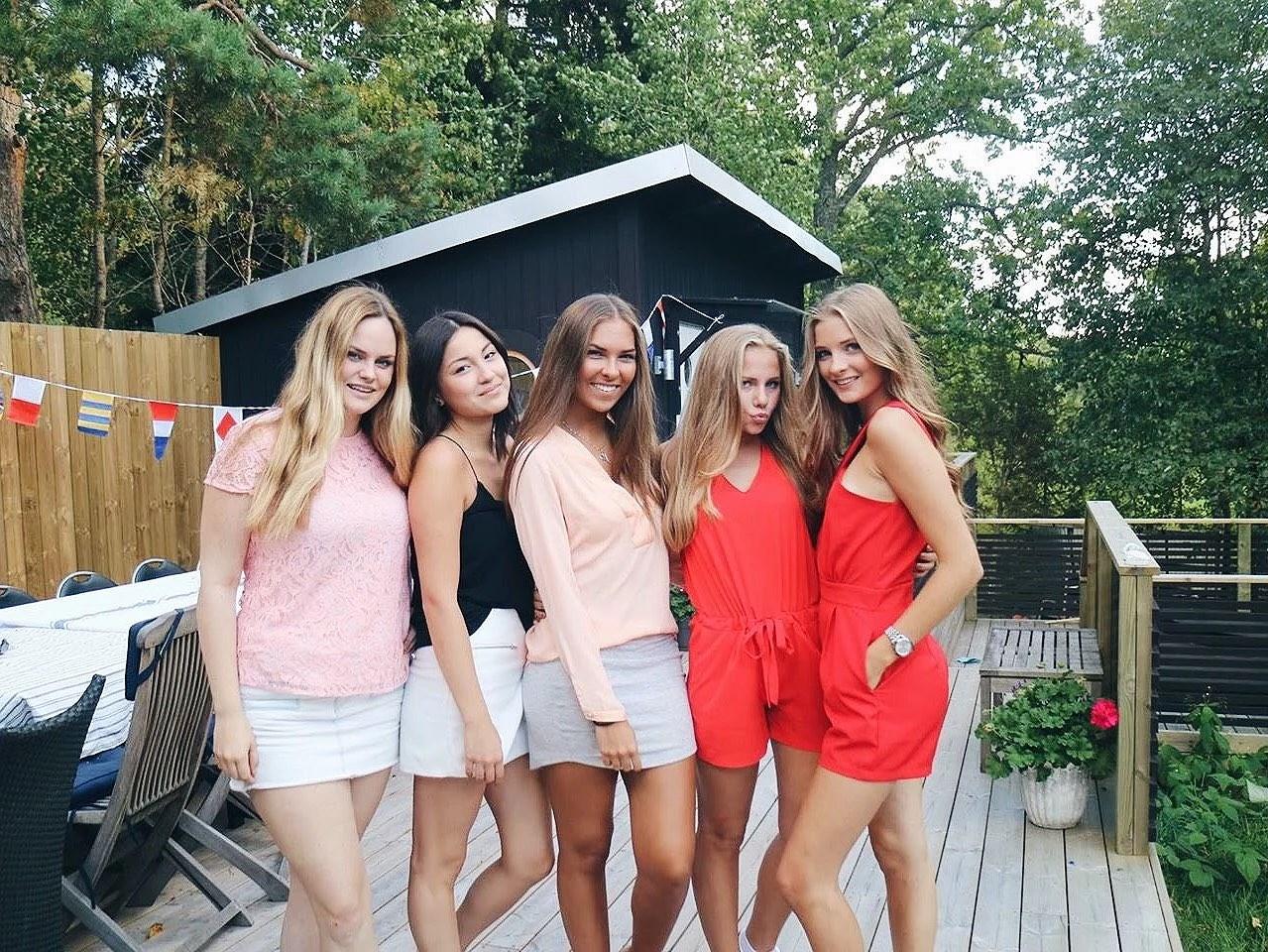 Fest och vänner