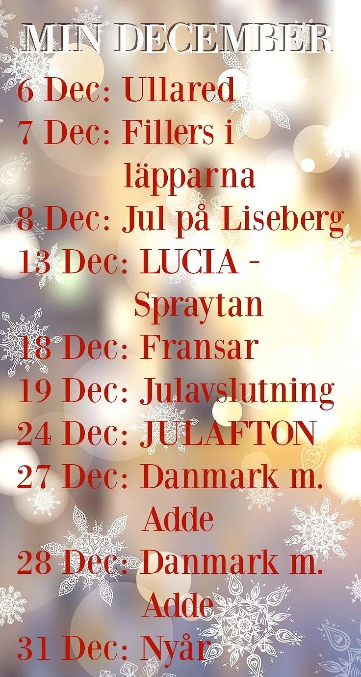 Mina planer i December