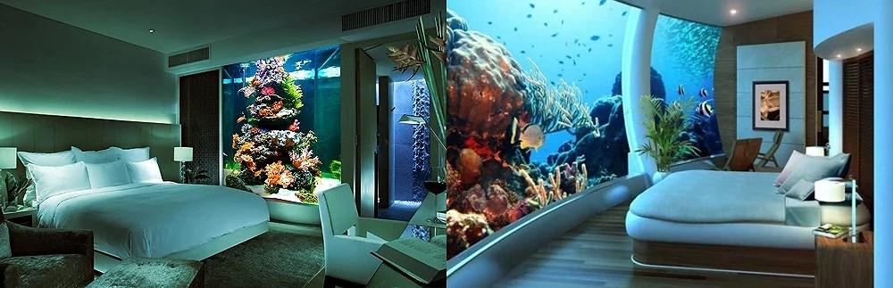 Coś dla odprężenia i relaksu. Magiczna moc akwarium!