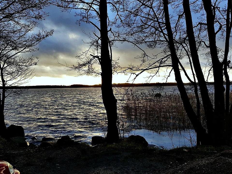 Skogspromenad -