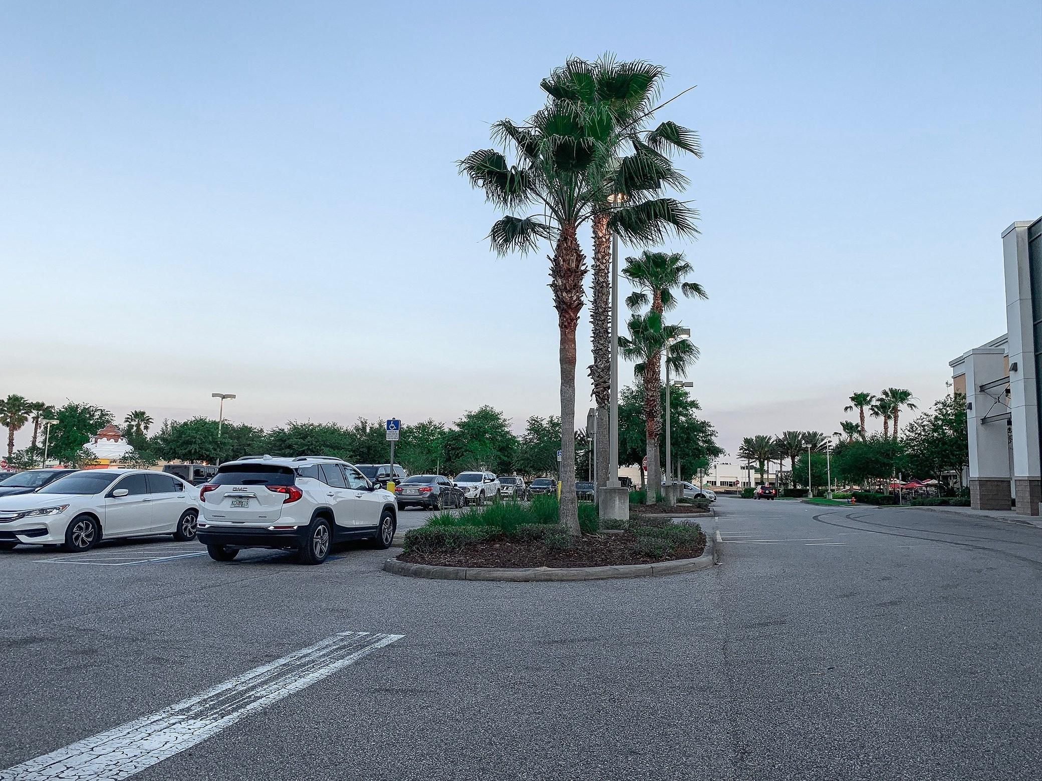 Dag 5 i Florida