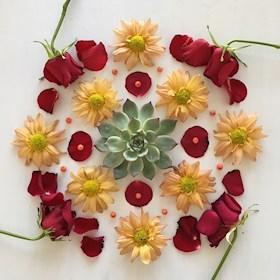 Natureflowerart