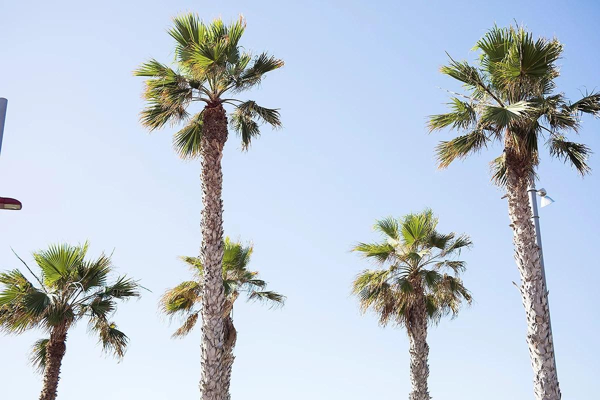 krist.in reise gran canaria las palmas