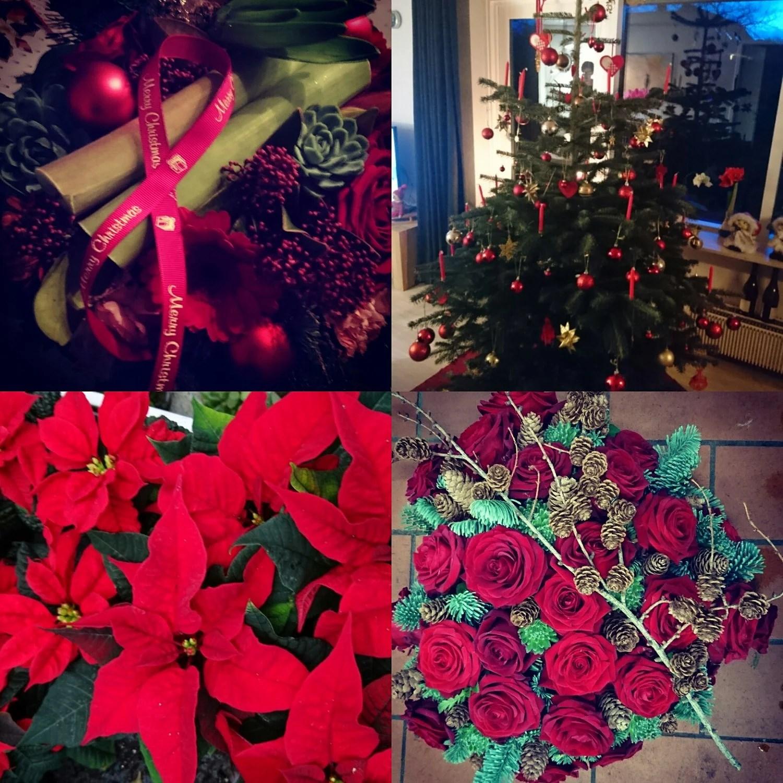 Julen der gik.