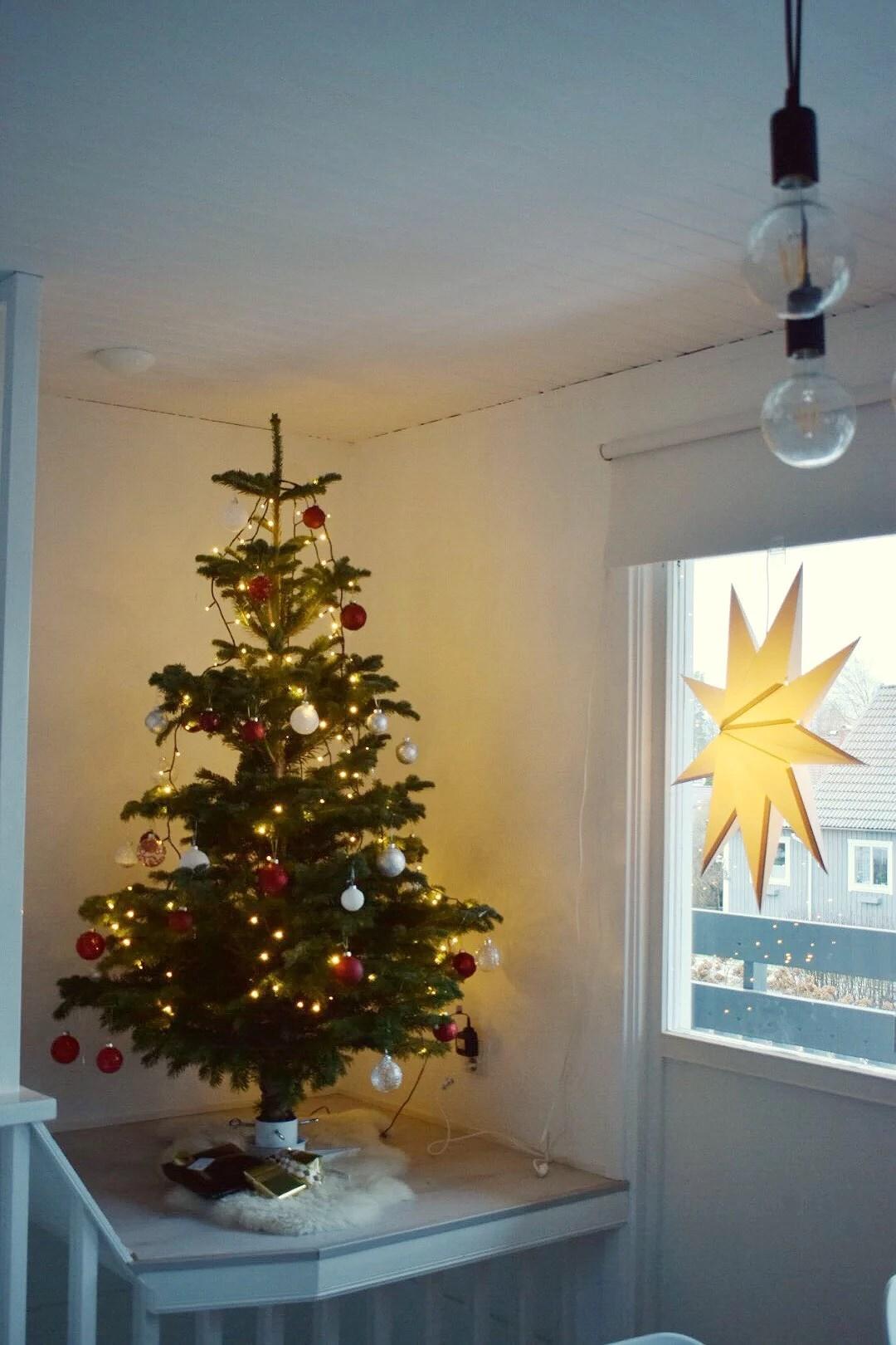 LUCIA & CHRISTMAS TREE