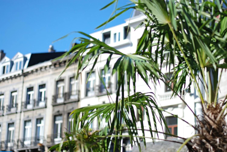 Mini guide til Bruxelles, Antwerpen og Gent