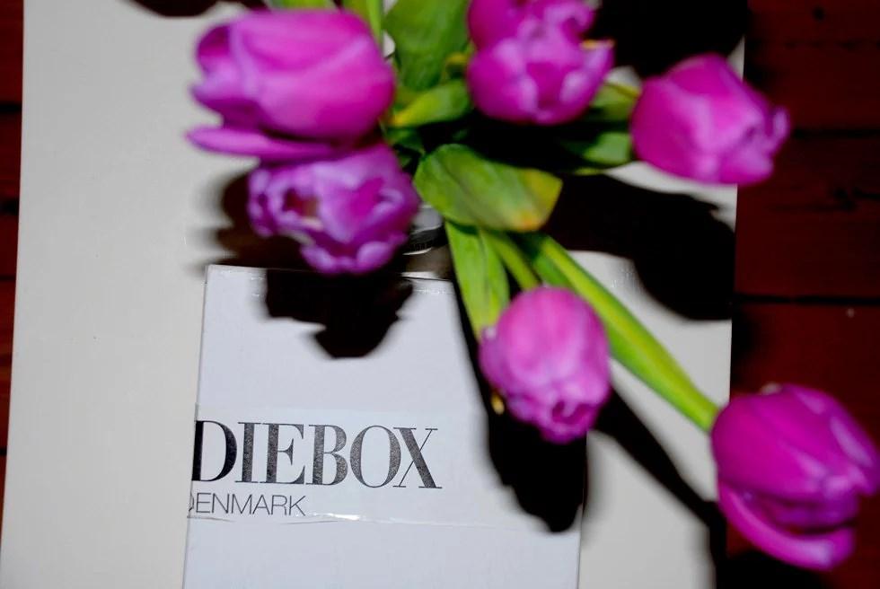 GOODIE BOX // PINK SPRING