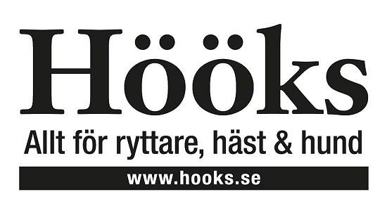 H-ks_logo
