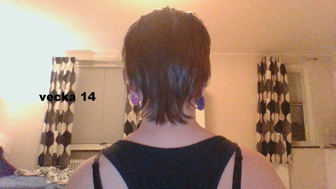 stora hårkuren funkar det