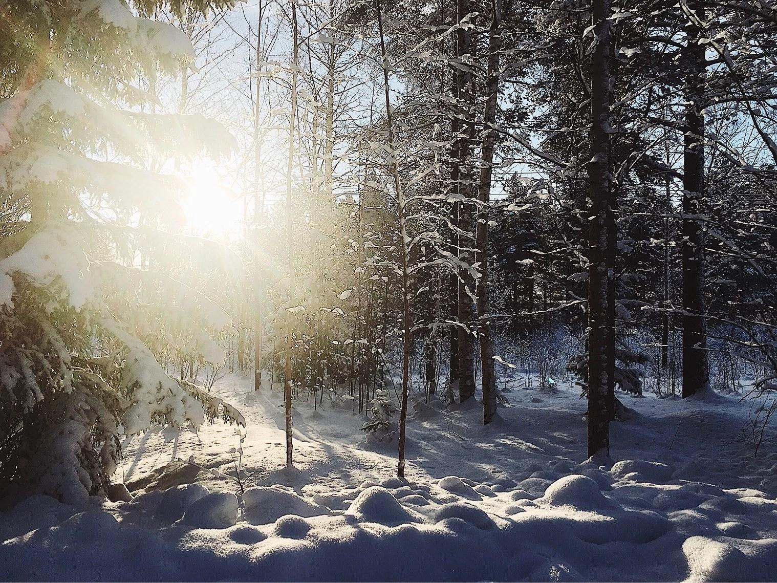IGÅR - TORSDAG