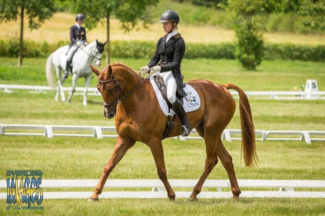 Gatcombe horse trials 2017