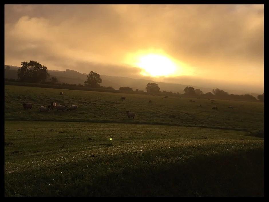 1 magisk morgon 💫