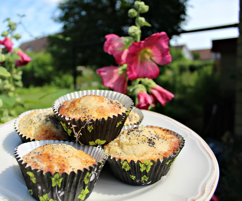 Muffins med citron och vallmofrön - Recept