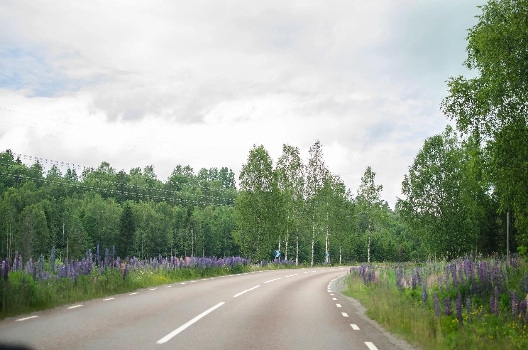 VÄRMSKOG