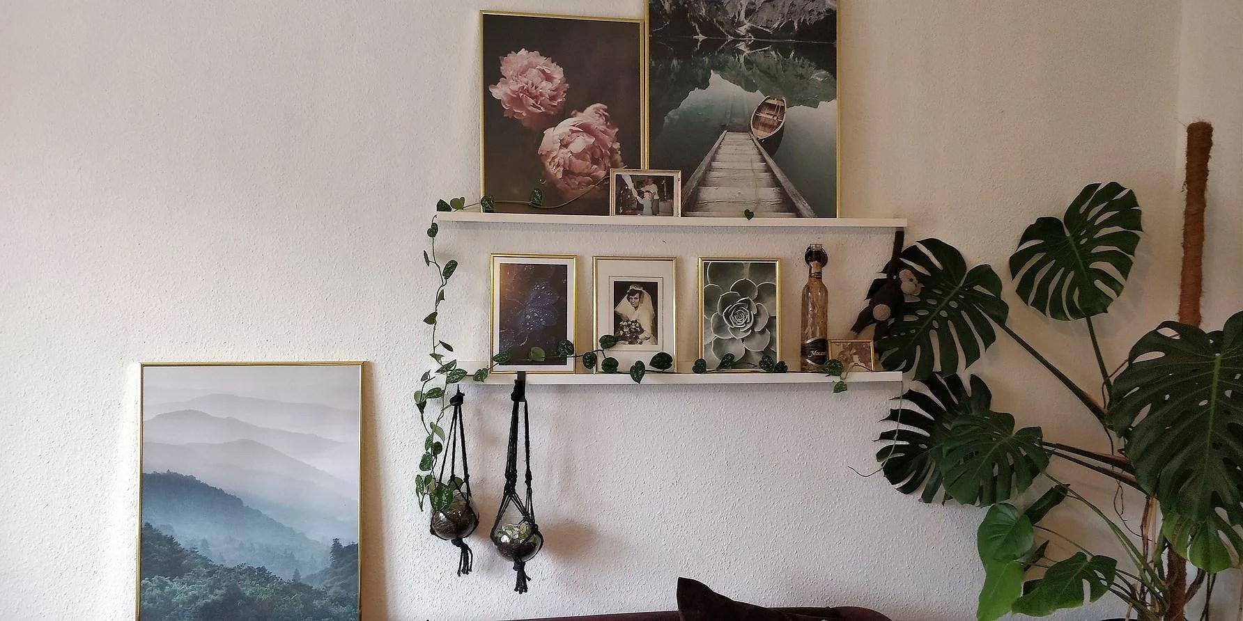 Posters og planter!