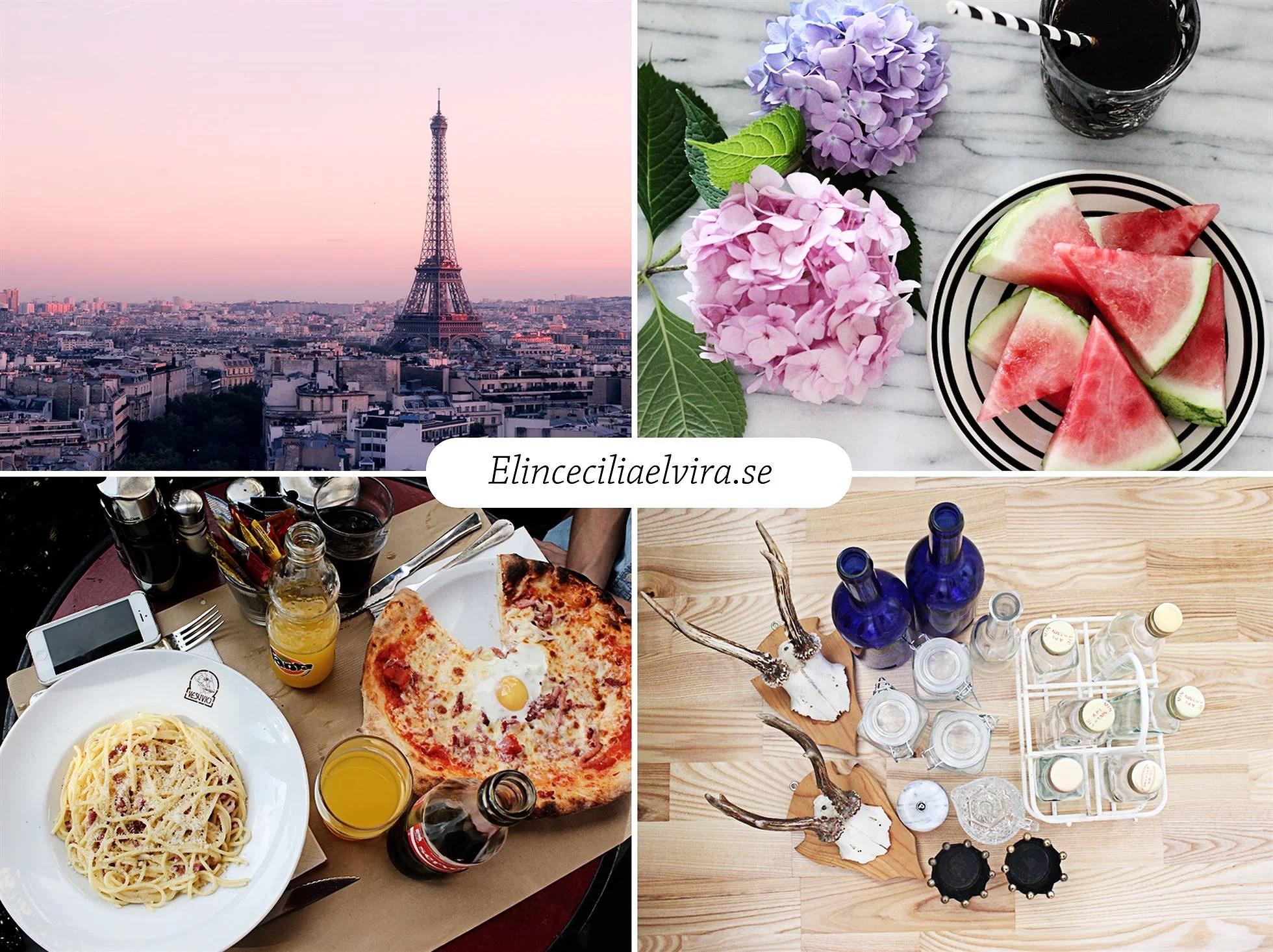 blogg-elin(2)