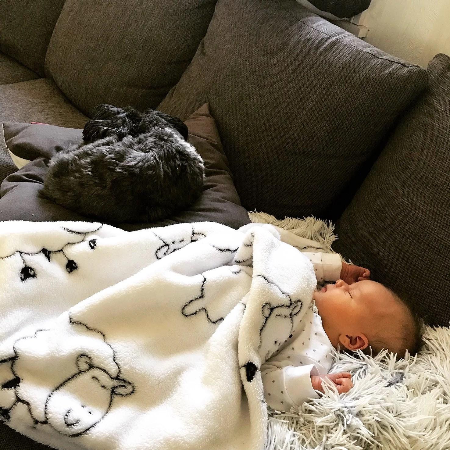 Storebror & lillebror