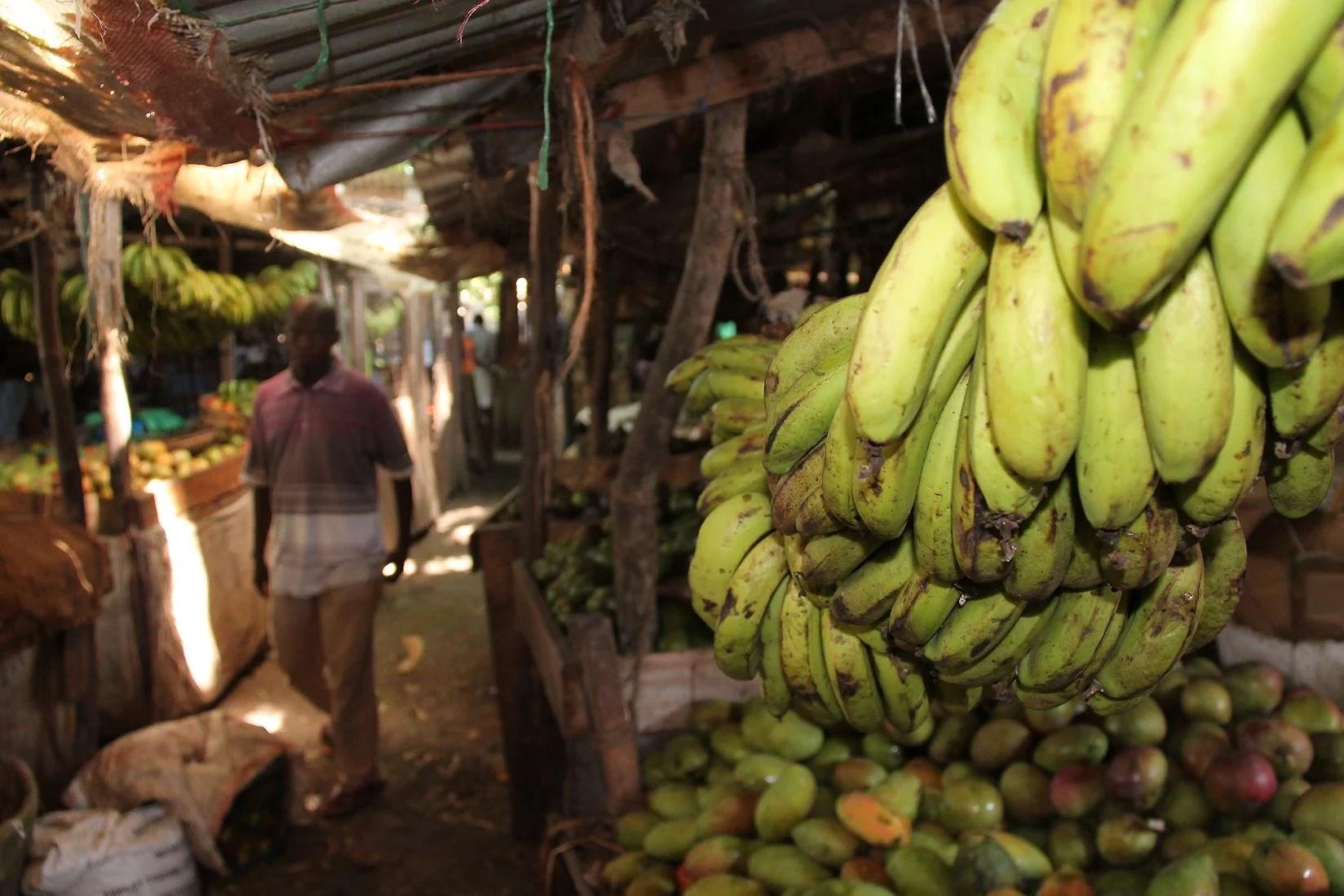 Pa jakt efter kylskap i Malindi City