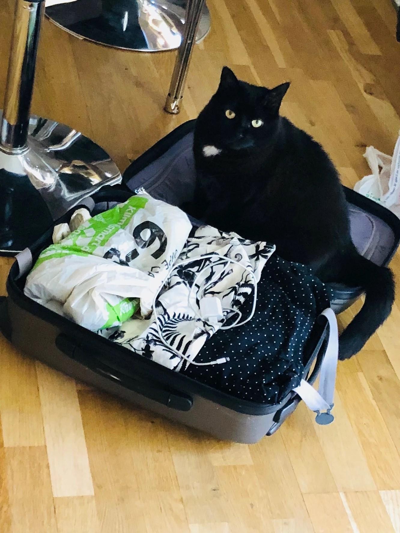 Väskan packad