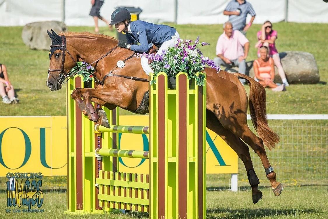 Denna hästen. Denna tävlingen. Denna rundan.