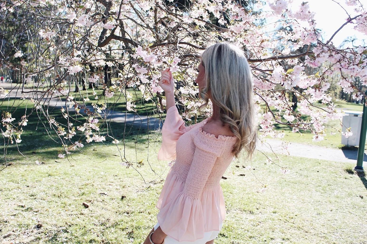 Cherry Blossom Inspo <3