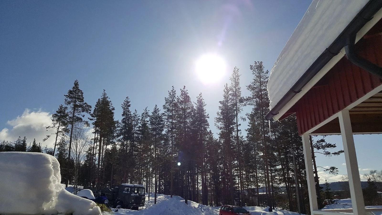 Loving the sun