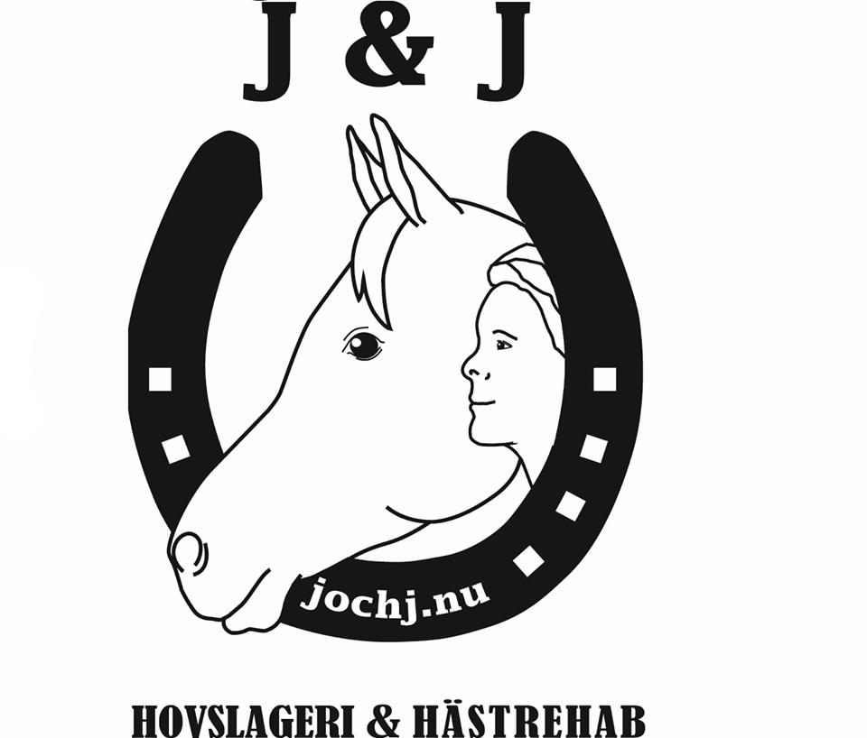 Besök av Jennie - Hästrehab