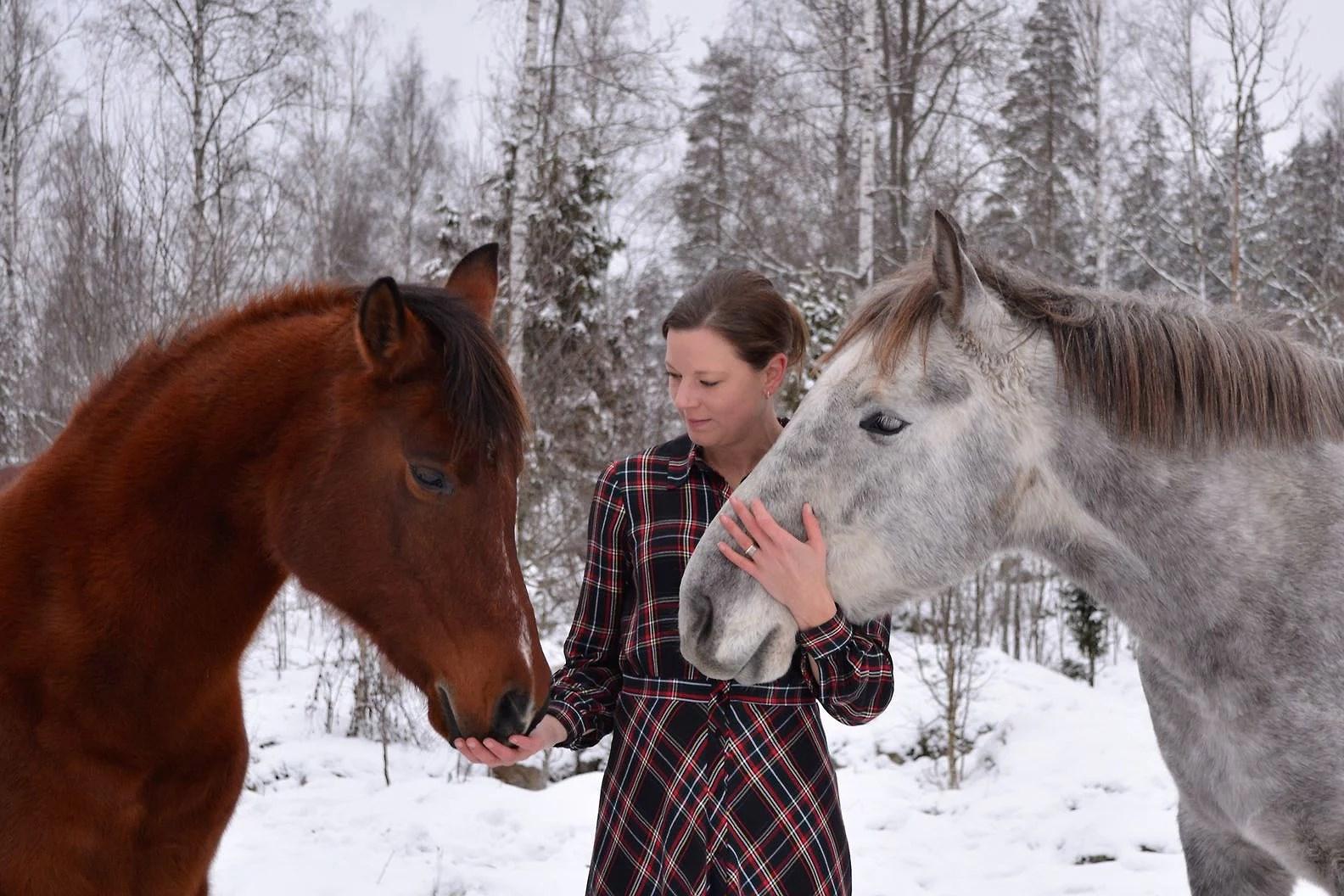 Årets julbilder med hästarna