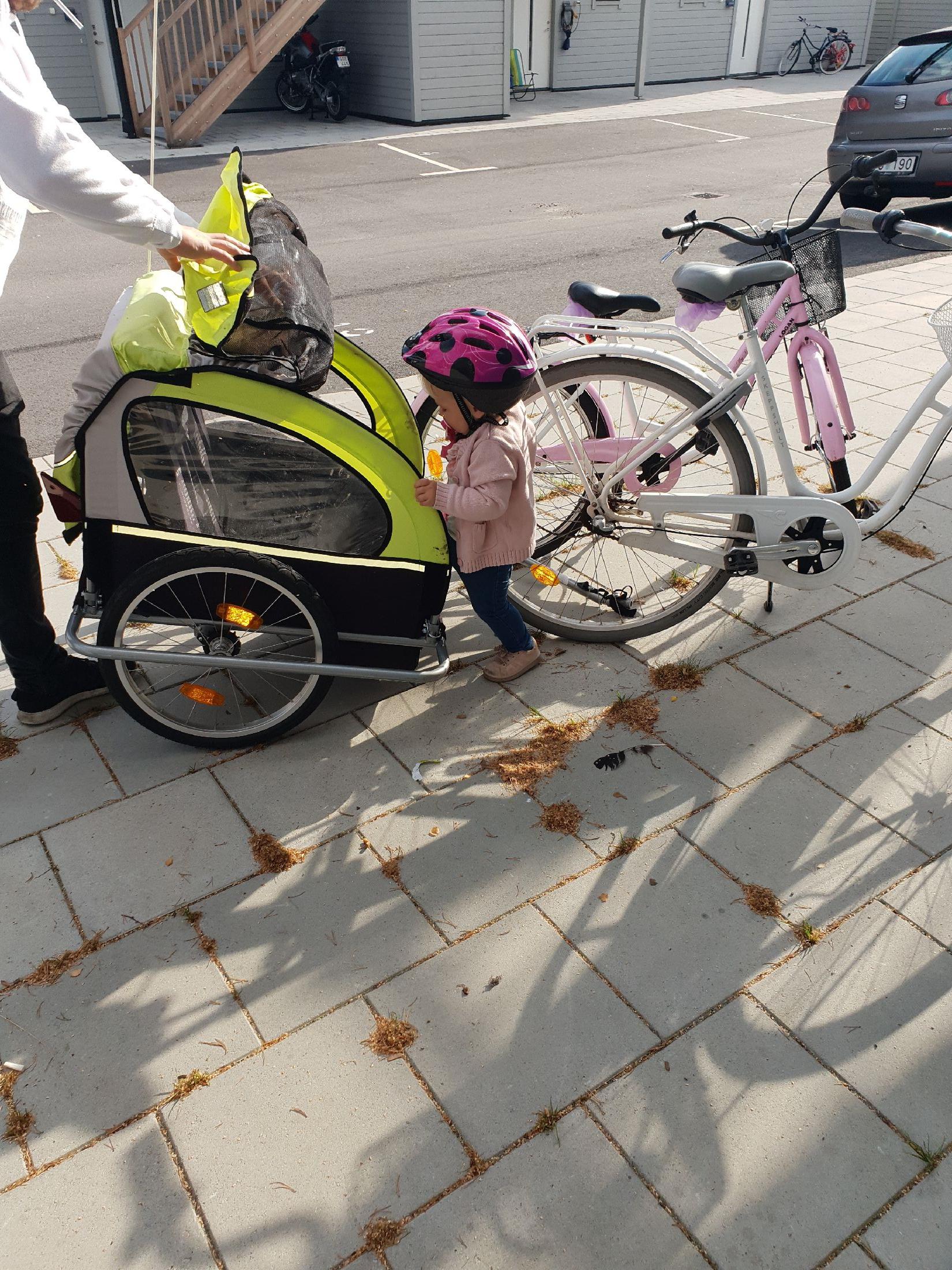 Åka cykelvagn