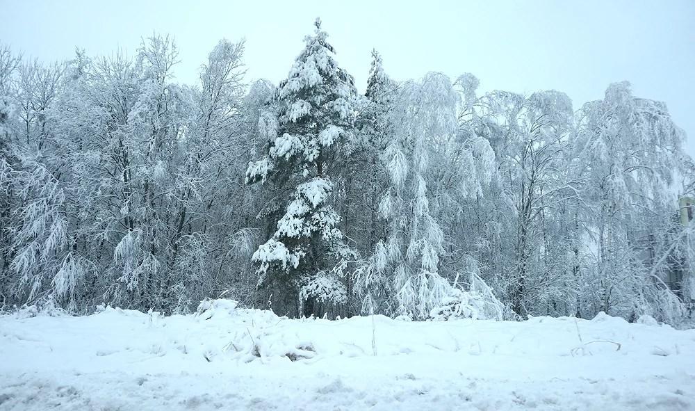 Vart är vårt vinterland?