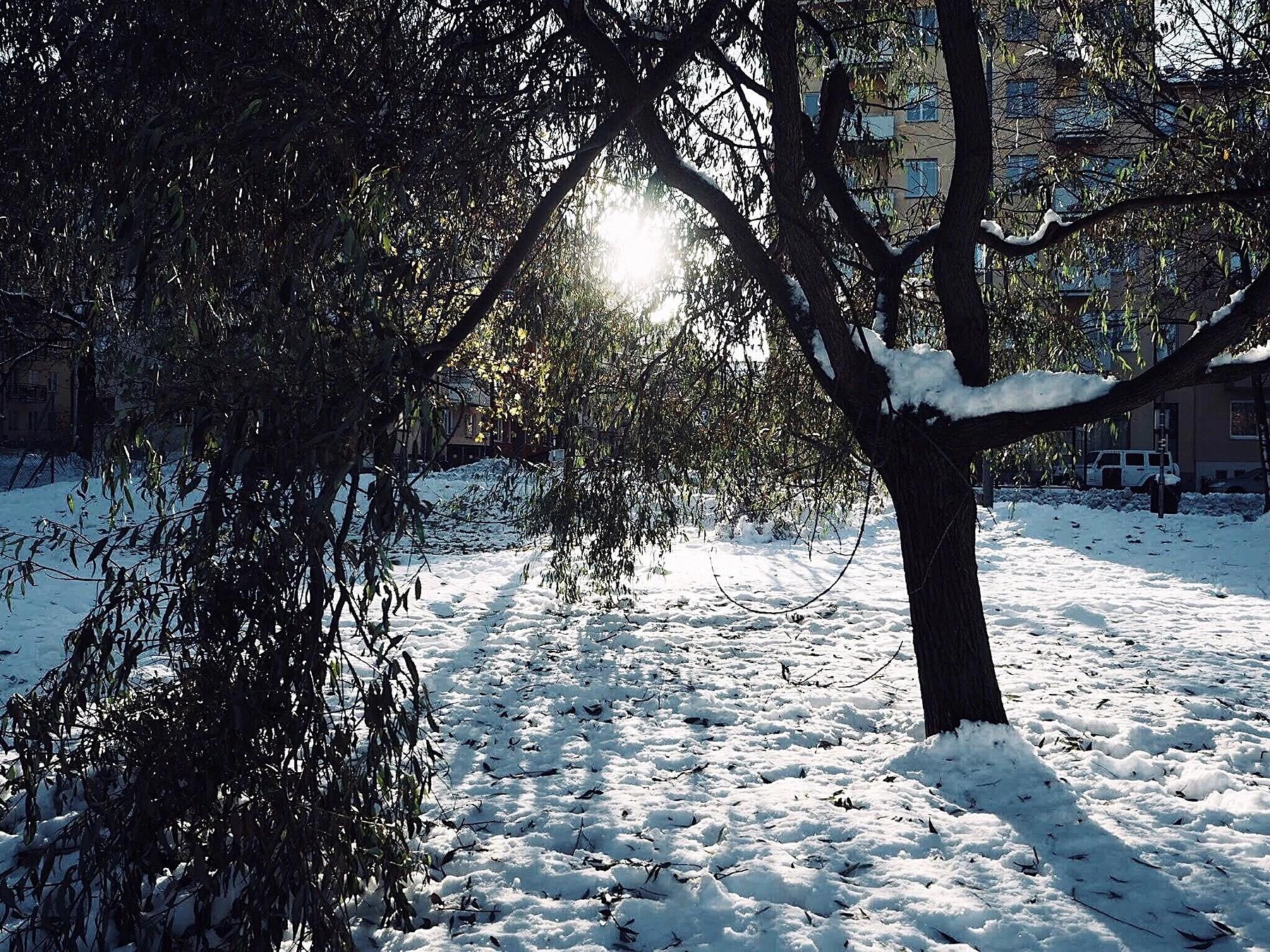 Första snön är här
