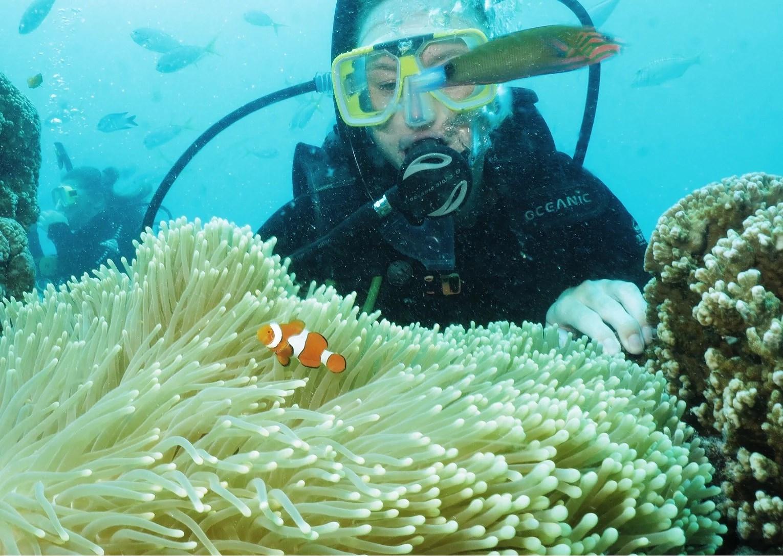 Cairns - Australien