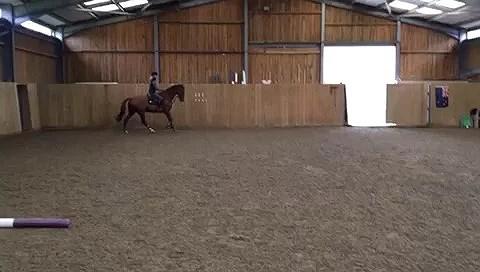 Raffi jumping