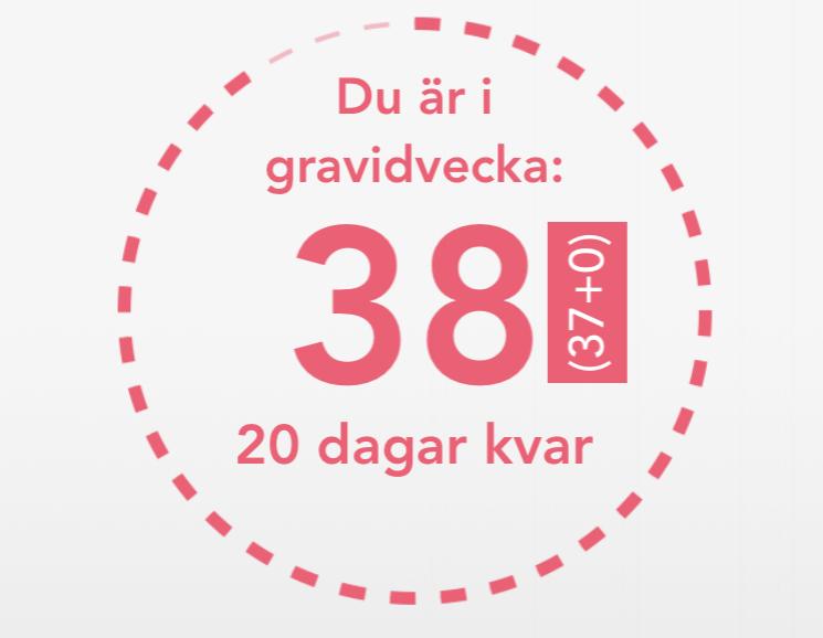 Gravidvecka 38, 20 DAGAR KVAR
