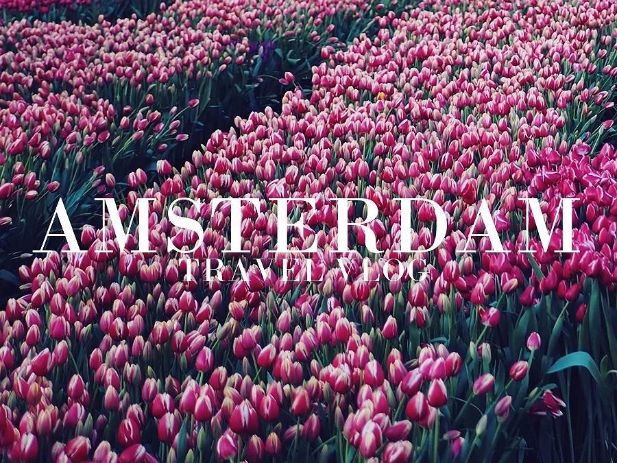 TRAVEL VLOG | AMSTERDAM
