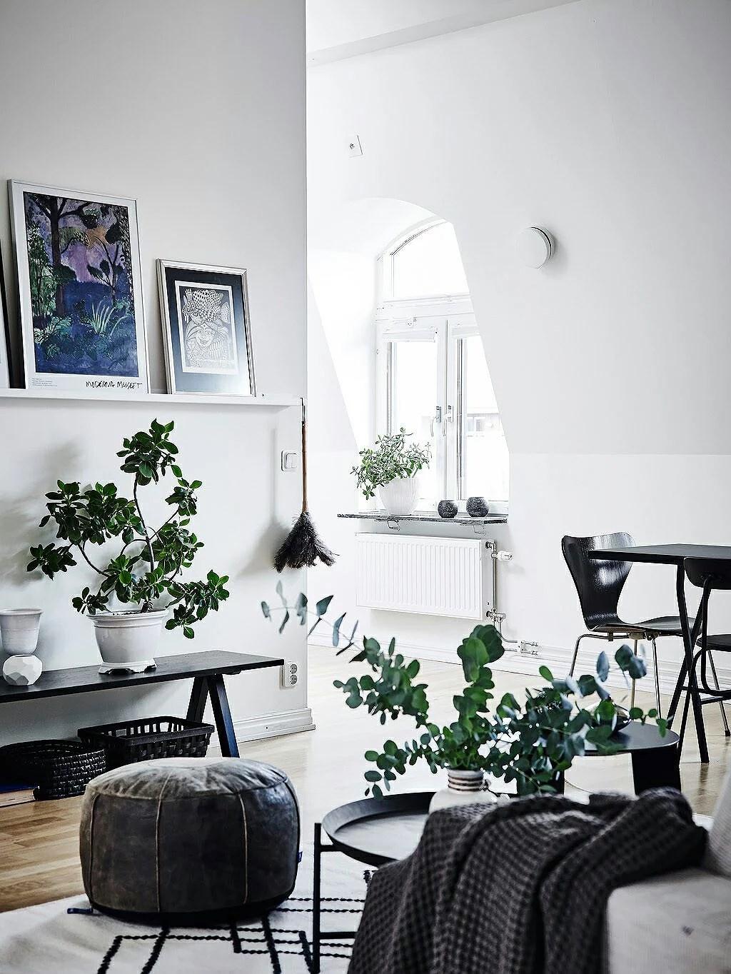 Finlir i Göteborg