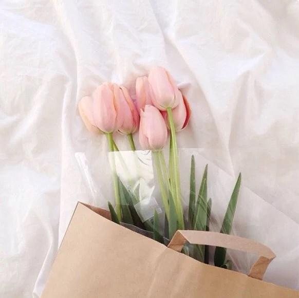 Rosa till våren