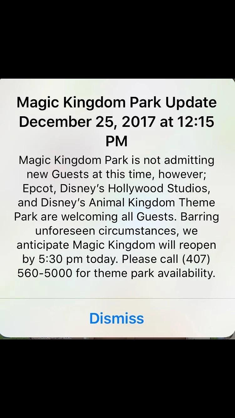 Walt Disney World under julen