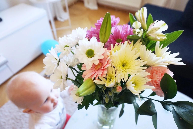 Vackra blommor & Kvällsmys
