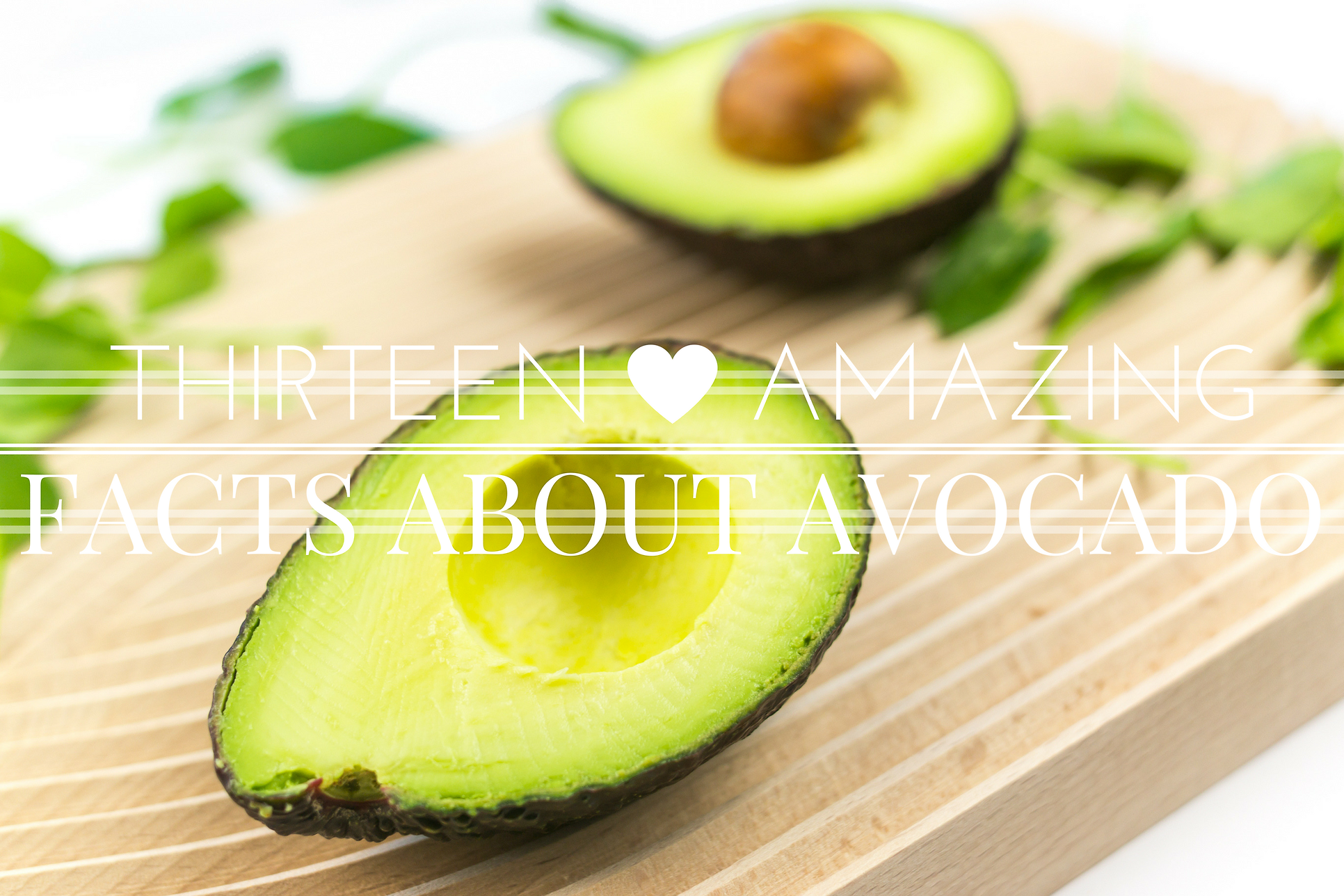 13 amazing facts about avocado