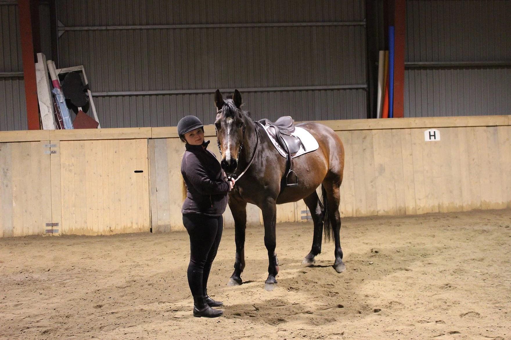 Hur skulle livet se ut utan häst?