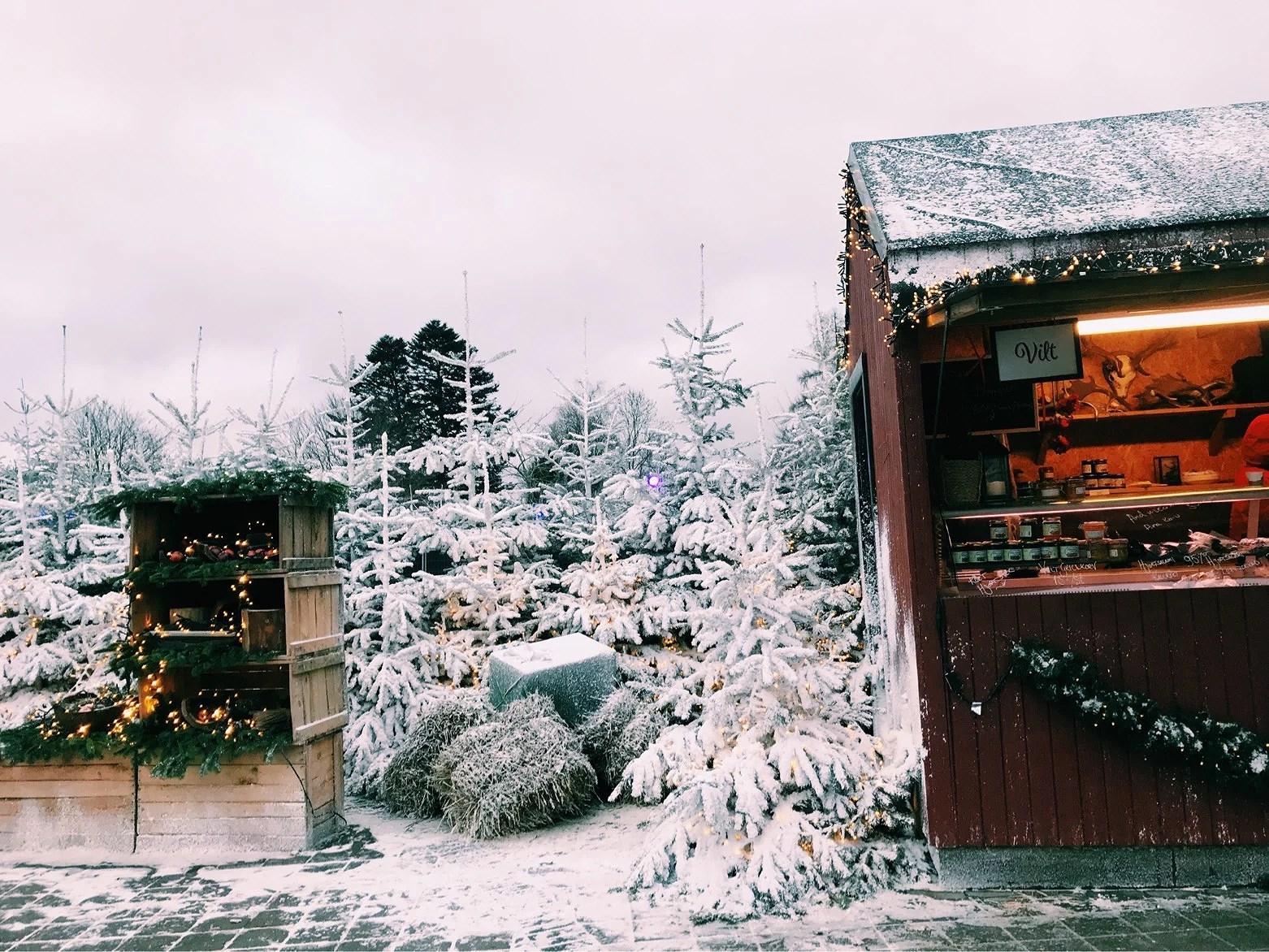 ÅRSRESUMÉ - MÅNAD TOLV