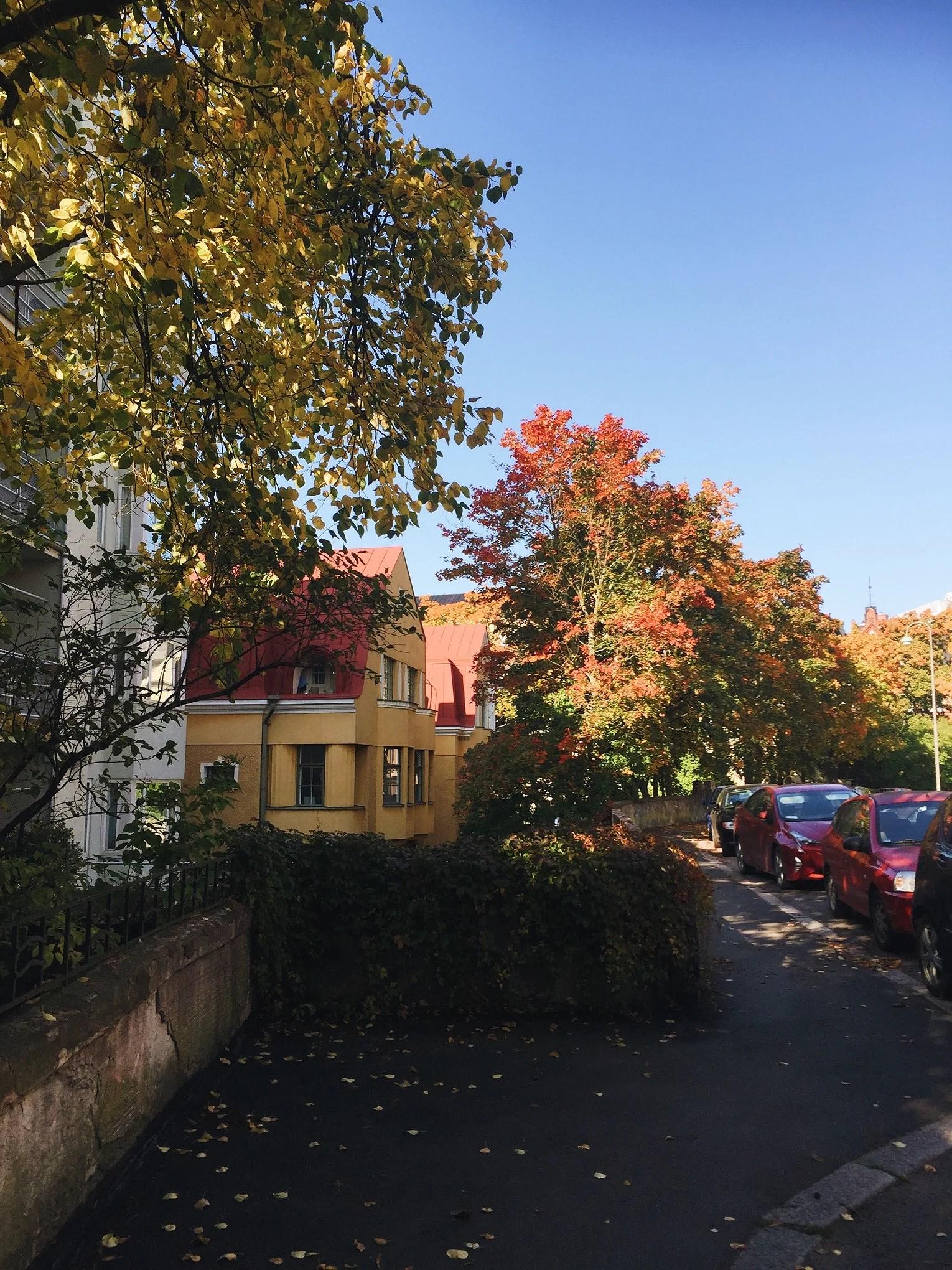 NÄR JAG BODDE I EIRA & TERASSVÄDER