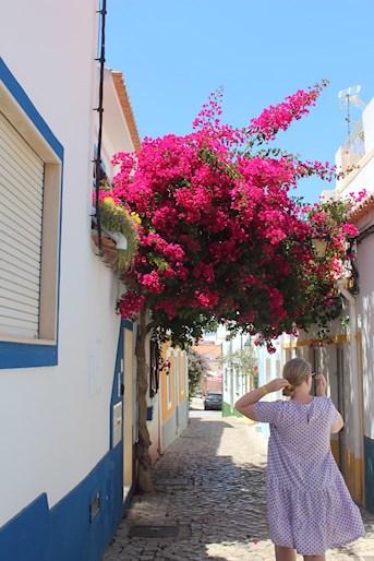 Ferragudo Old Street