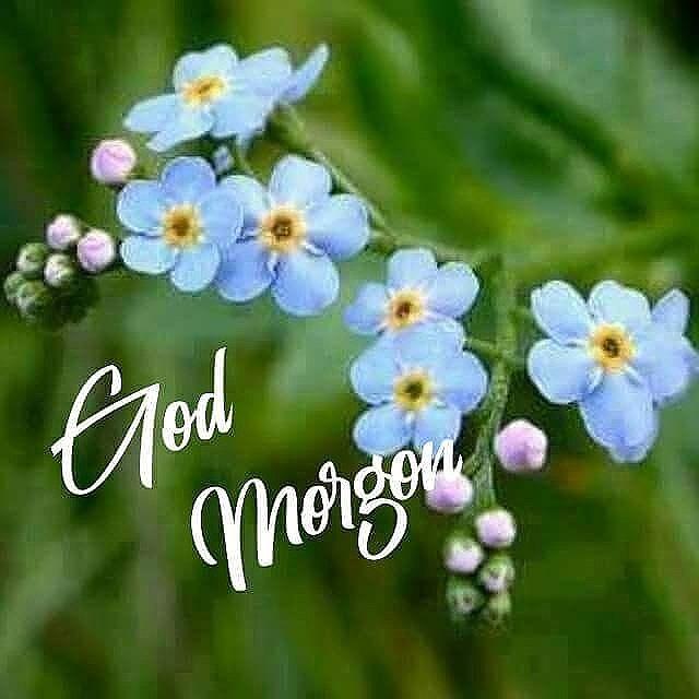 God Morgon Eller?