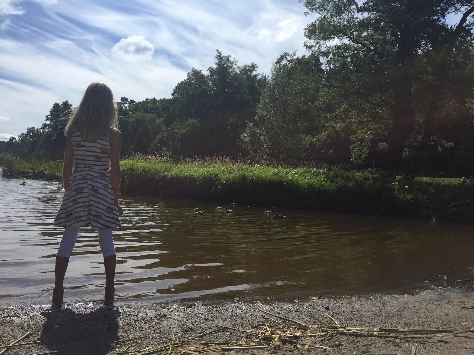 Längs vattnet